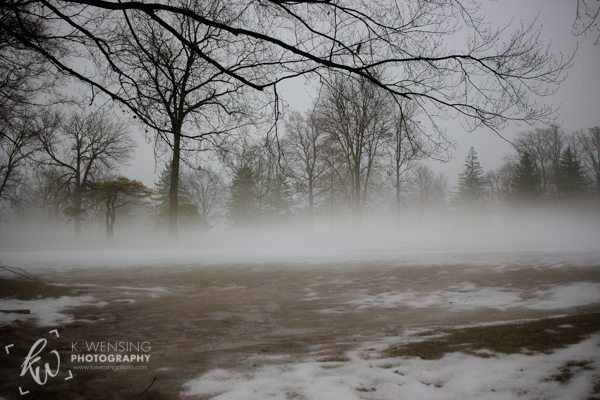 Landscape in the mist.