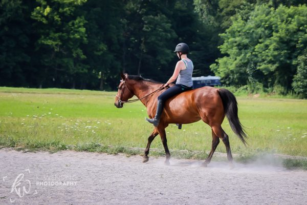 Rider riding her horse bareback.